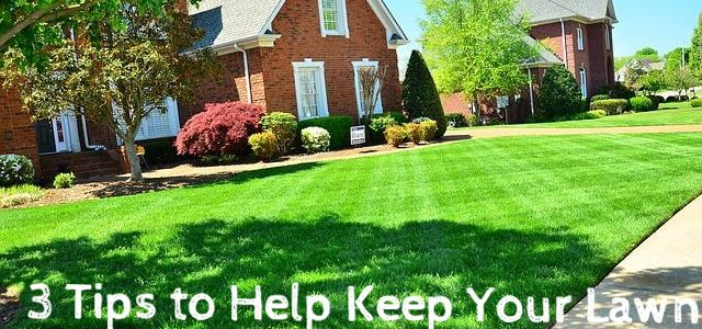 3 Tips to Help Keep Your Lawn Healthy All Year Round